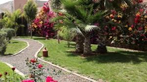 Jardin-mur
